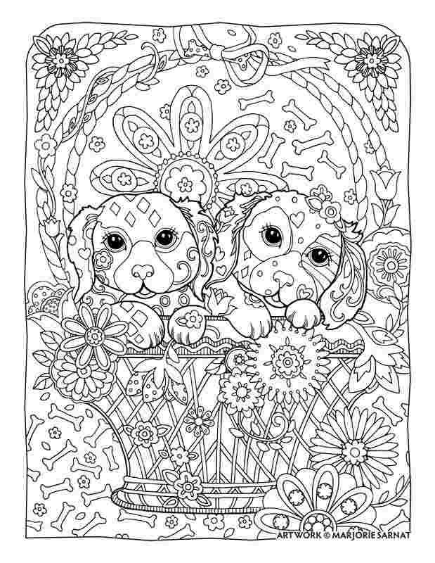coloring pages for adults dog carin terrier doc my love for