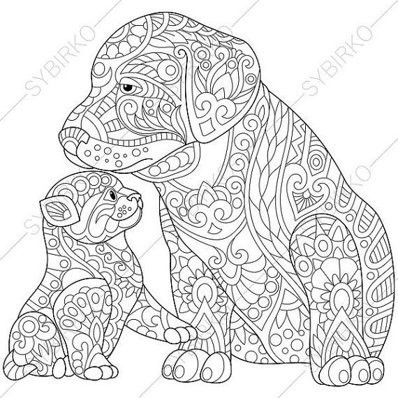 coloring pages for adults labrador dog kitten adult