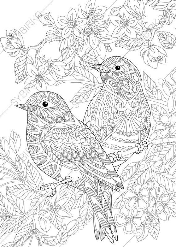 coloring pages for adults love birds spring flowers