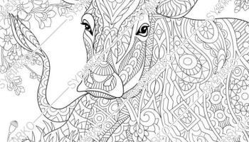 Detailed Animal Coloring Pages | Haramiran | 200x350