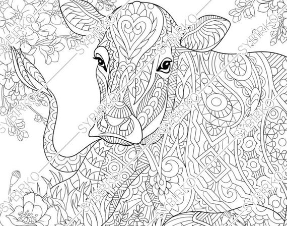 coloring pages for adults milky cow adult coloring pages animal coloring pages digital jpg pdf coloring page instant download print