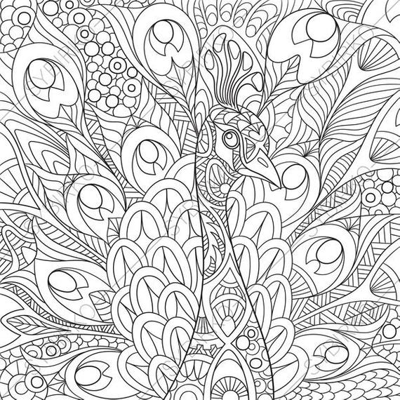 coloring pages for adults peacock colouring page adult coloring book animal coloring book instant download printable pdf jpg files