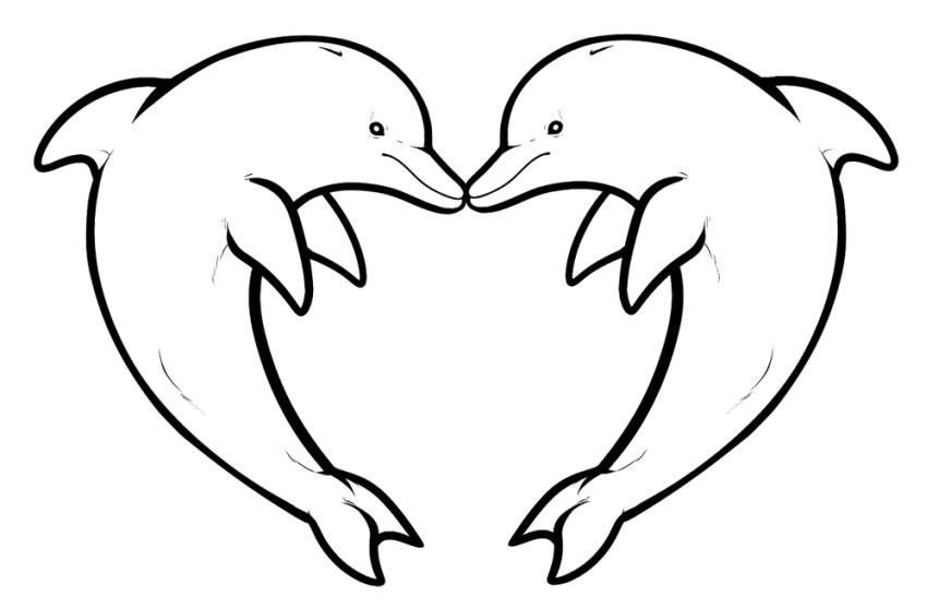 coloring pages for dolphins