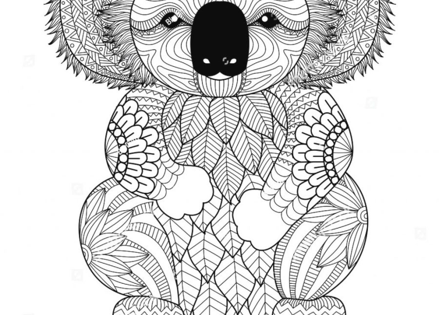 coloring pages ideas combo panda coloring pages koala for