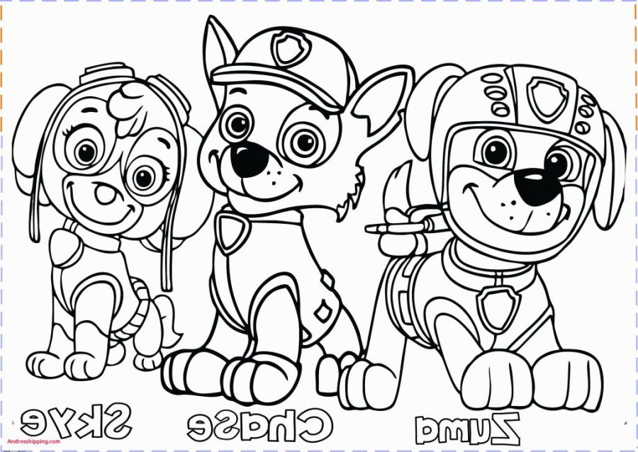coloring pages ideas paw patrololoring printables