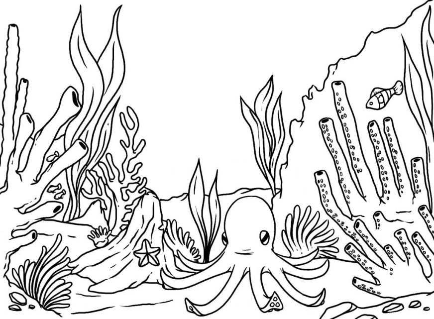 coloring pages ideas underwater coloring pages