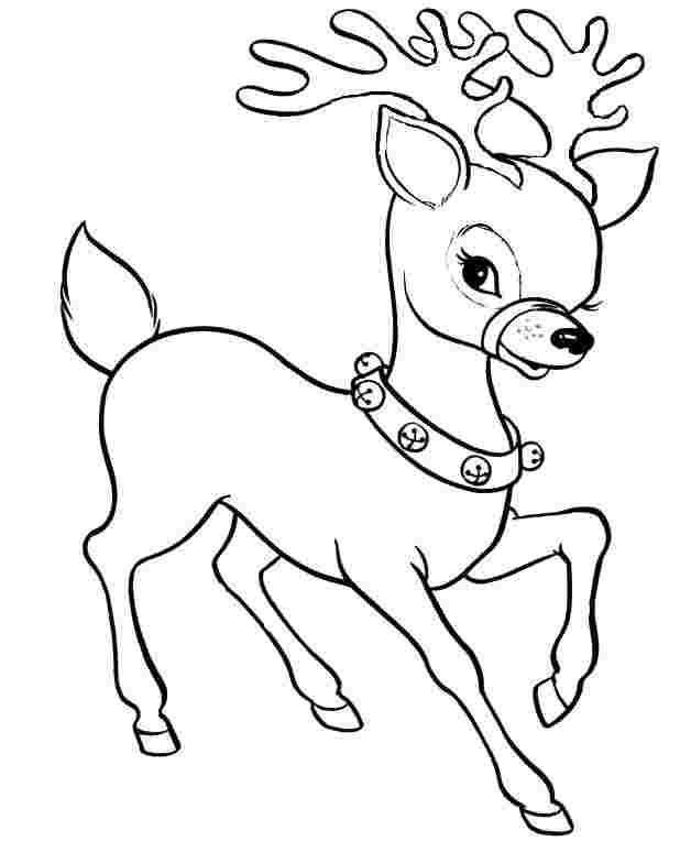 coloring pages of a reindeer reindeer coloring pages