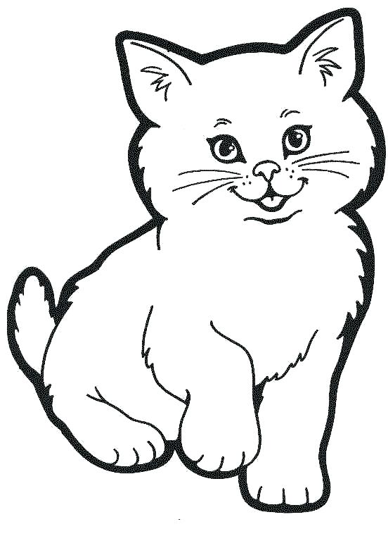 coloring pages of cat in the hat schoogle
