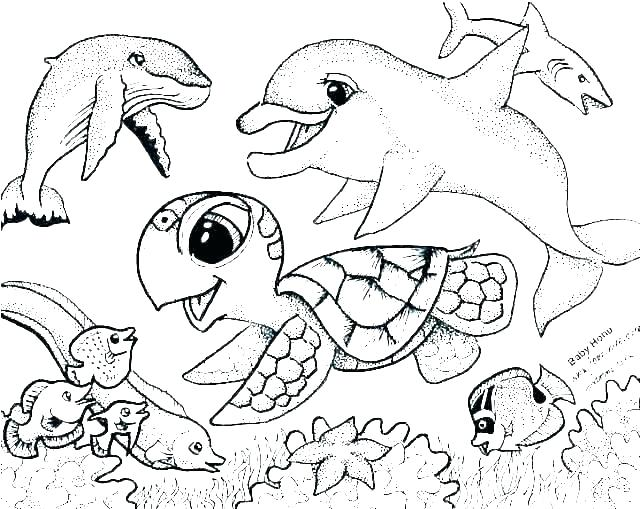 coloring pages of fish fisher price page a desimazaclub
