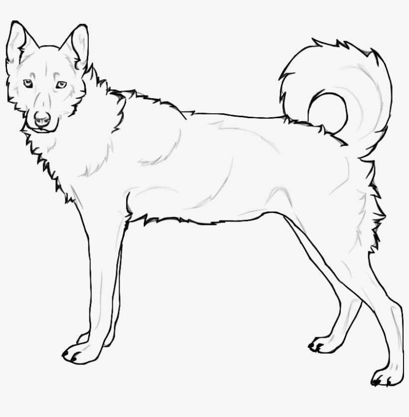 coloring pages of husky dogs siberian husky huskies