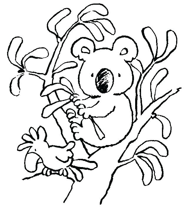coloring pages of koalas interesantecosmetice