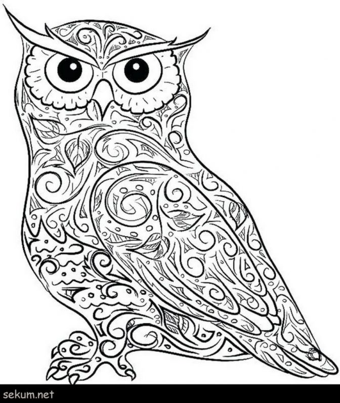 coloring pages owl coloring pages for adults cute owl