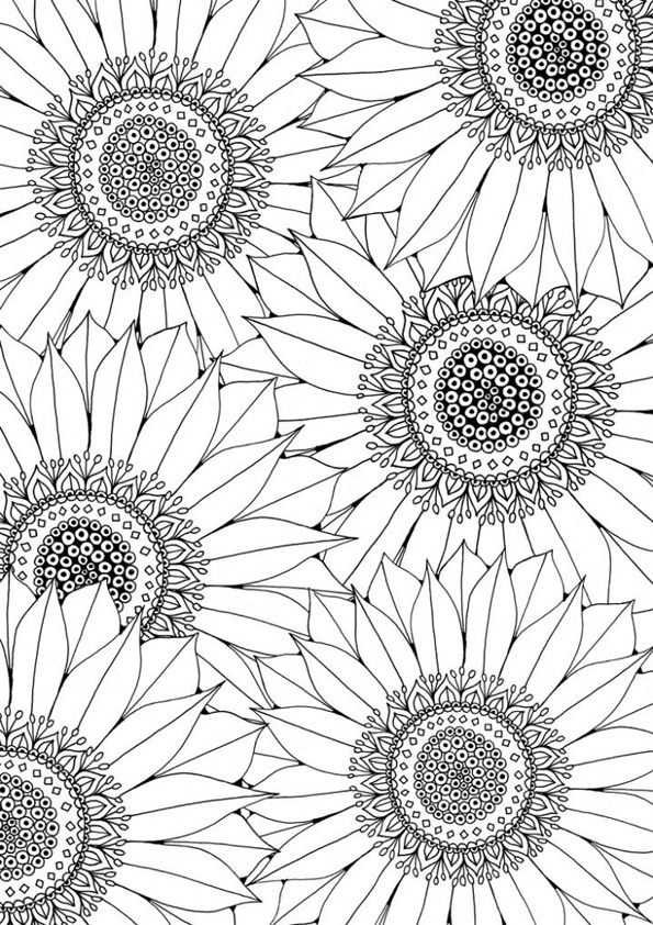 coloring pages sunflower coloring pages for adults