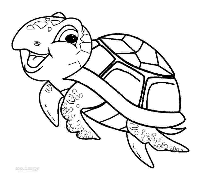 coloring pages turtles printable printable sea turtle
