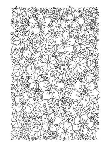 coloring poster flowers greenery coloring art 40x30in