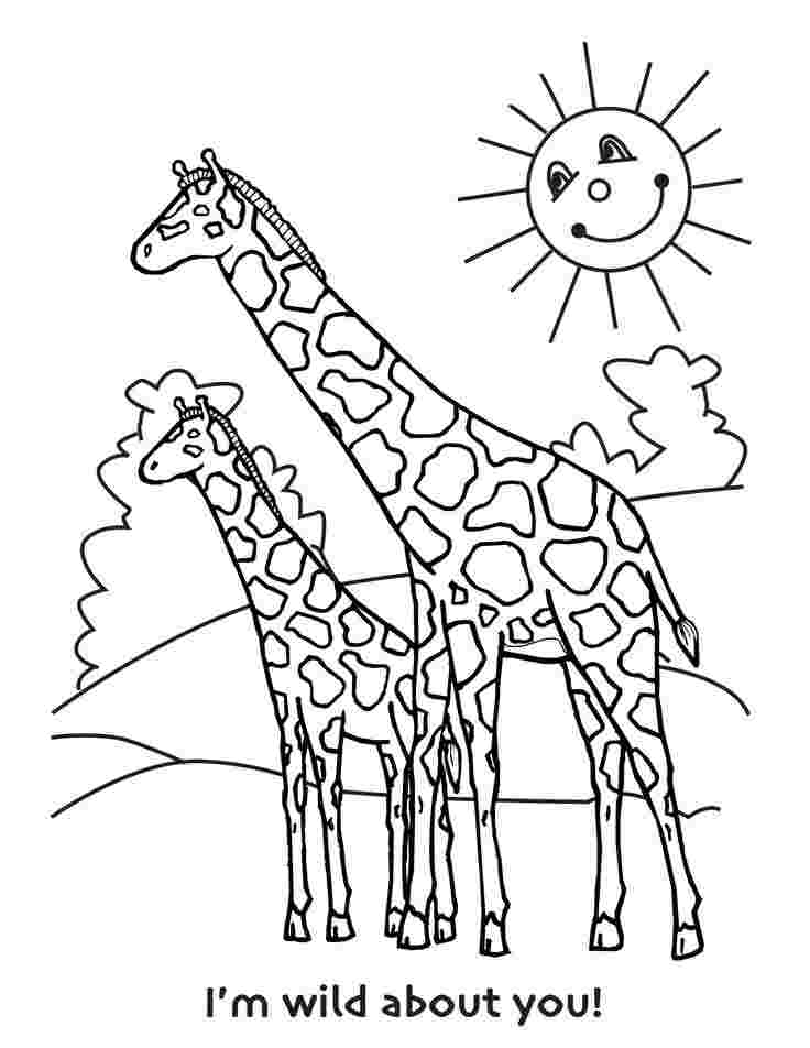 colouring pages of giraffe giraffe coloring pages