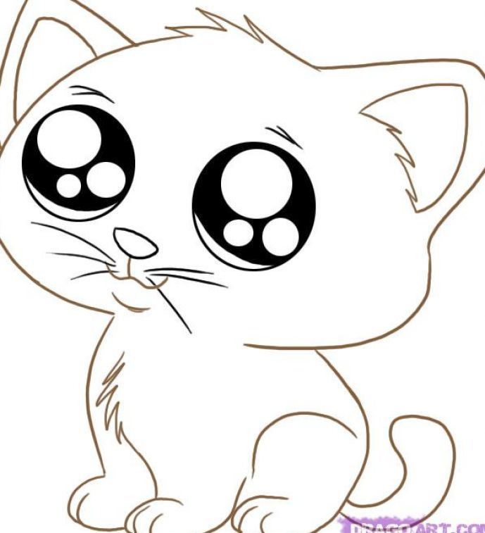 cute animal coloring pages printable cute animal coloring
