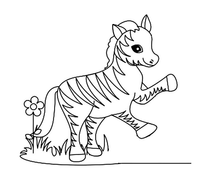 cute ba zebra coloring pages free fun for kids