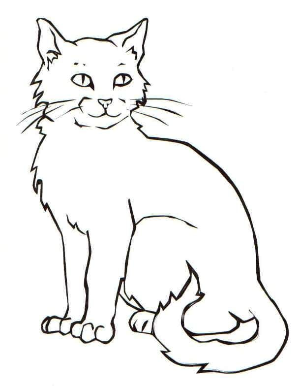 cute kitten coloring pages idea cat coloring page