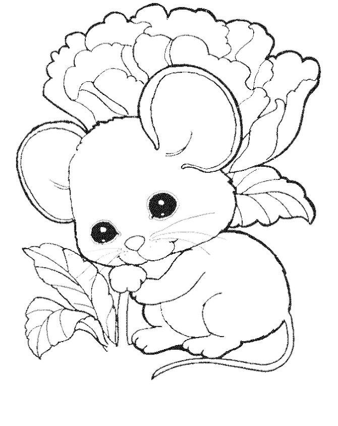 cute mouse coloring pages free myky cute mouse mouse