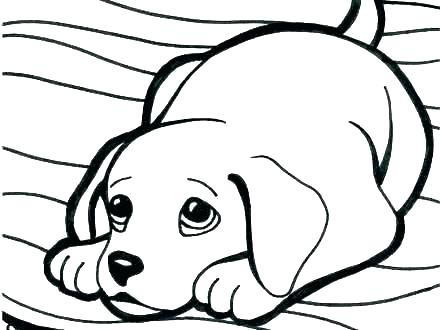 cute puppies coloring pages ba puppy of colouring to print