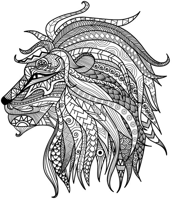 detailed lion advanced coloring page a to z teacher stuff