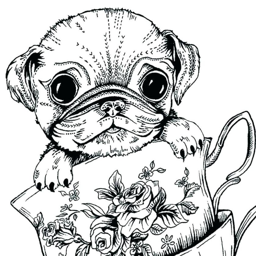 dog coloring pictures for adults pusat hobi
