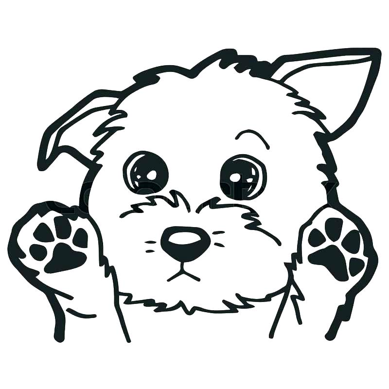 dog head coloring pages at getdrawings free for