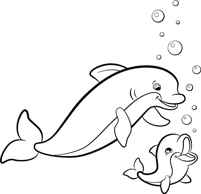 dolphin coloring pages 9 printable for adults teless