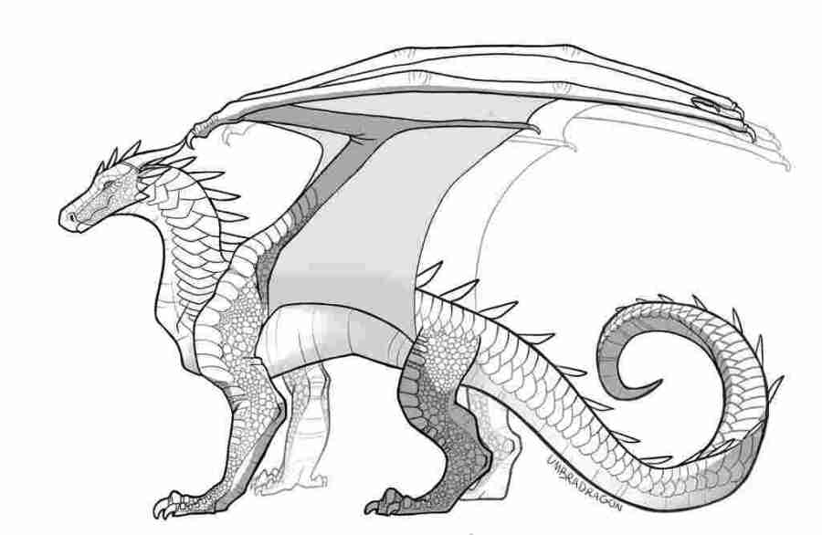 dragon coloring pages wings of fire seawings dragon from