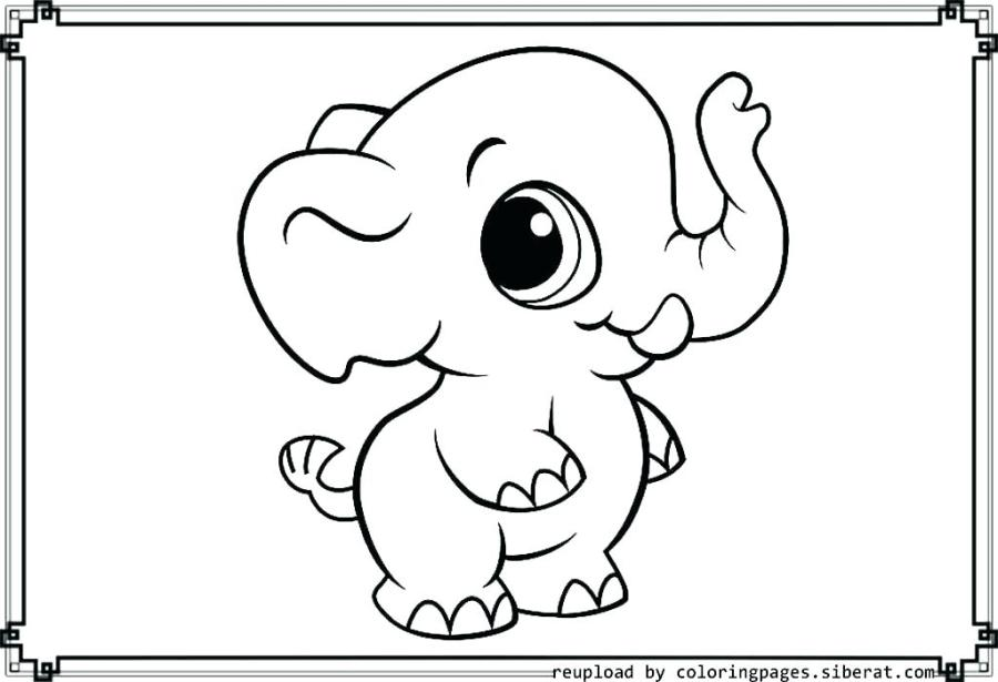 elephant coloring pages at getdrawings free for
