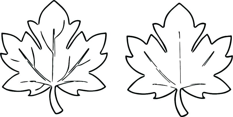 fall leaves coloring pages printable leaf to print ambulance