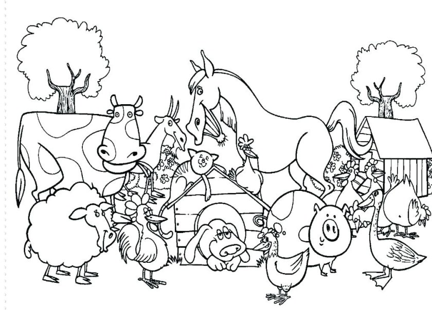farm animal coloring pages uwcoalition