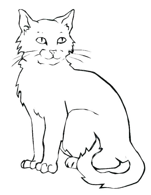 fat cat coloring sheets superfresco