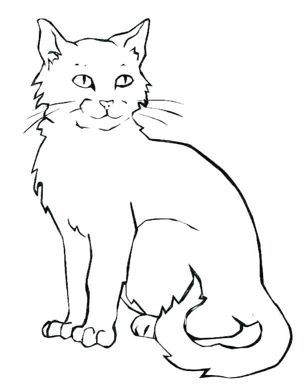 fat cat coloring sheets superfresco
