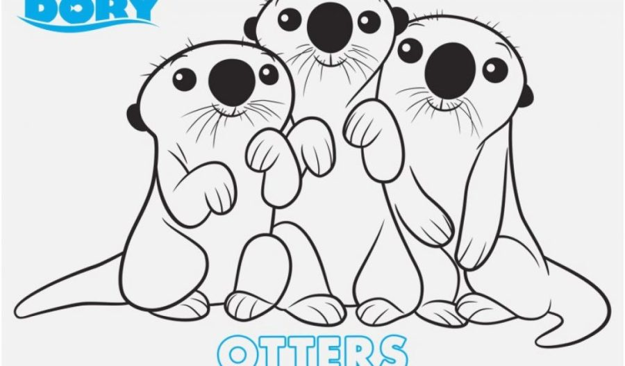 finding dory color pages pics finding dory to print finding