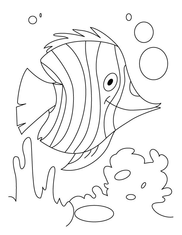 fish flutter in water coloring pages download free fish
