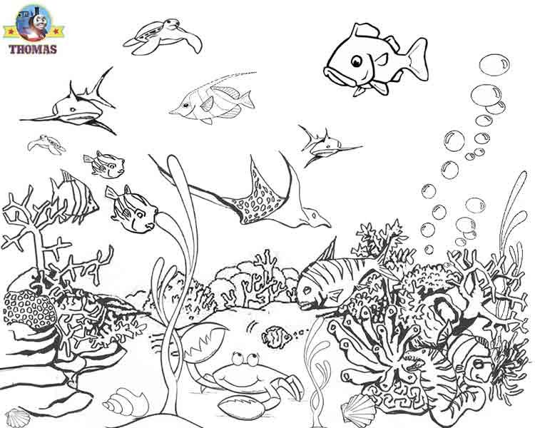 fish under the sea coloring pages ocean coloring pages