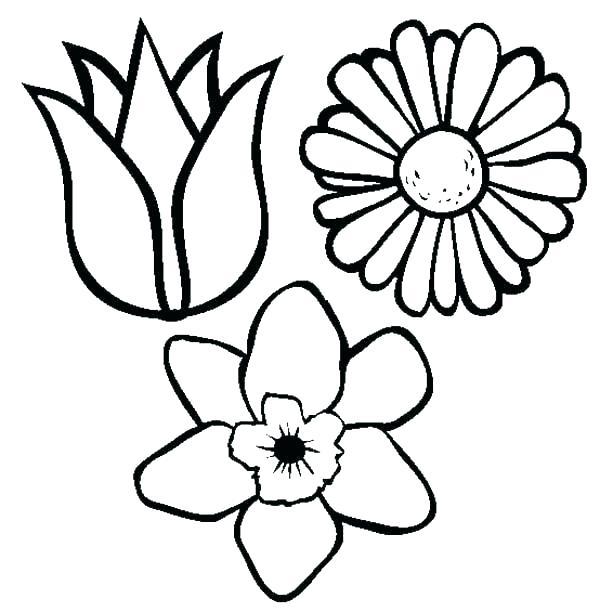 flower pictures to color justdiscipline