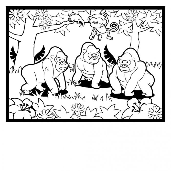 free coloring page gorilla pusat hobi