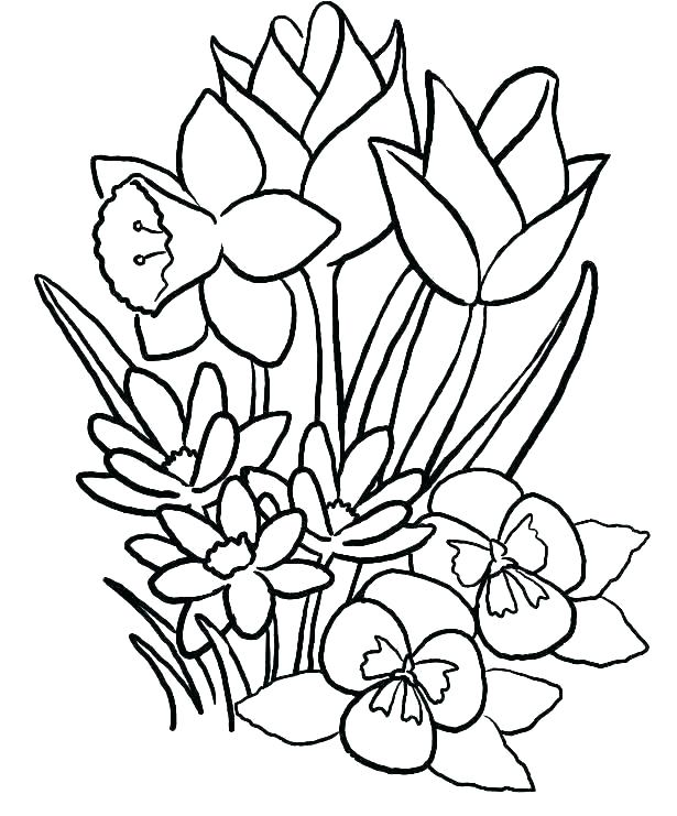 free coloring pages flowers africaecommerceco