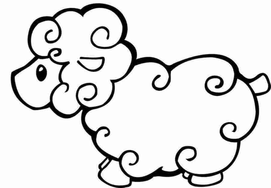 free coloring pages of sheep free printable sheep coloring