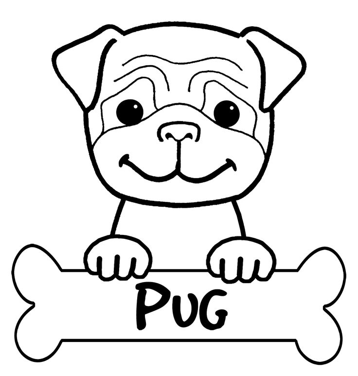 free coloring pages pug download free clip art free clip