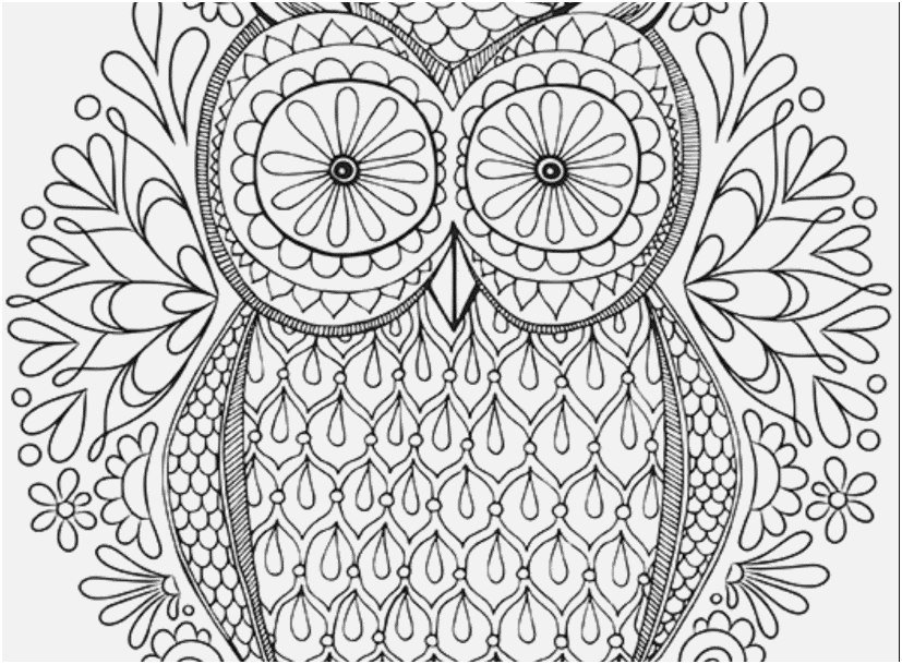 free owl coloring pages for adults photo outstanding