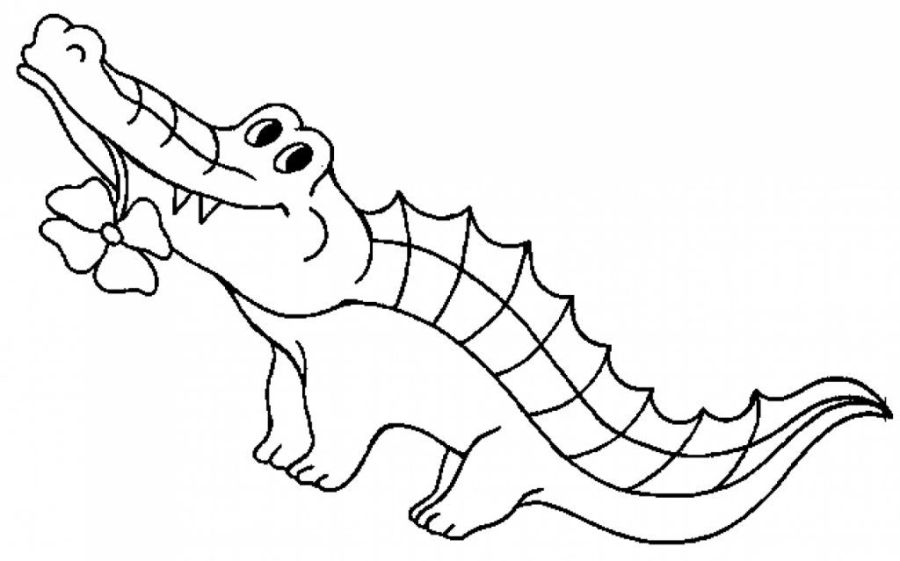 free printable crocodile coloring pages for kids zoo