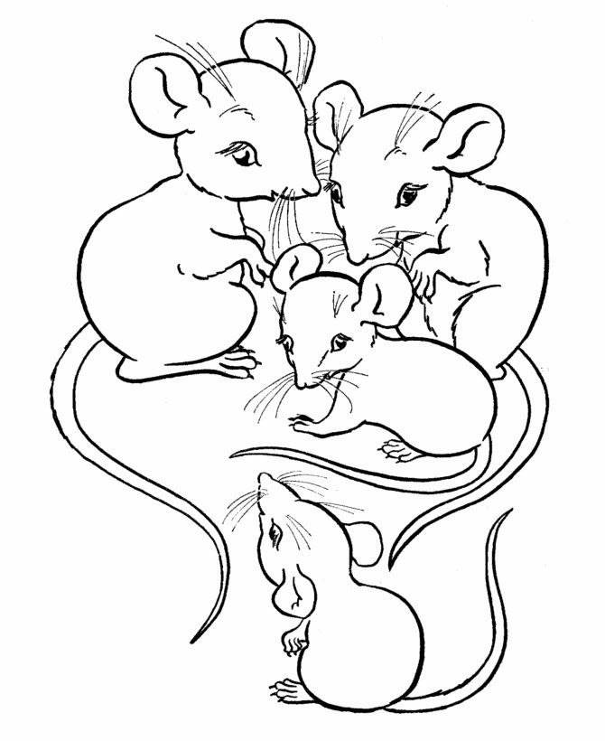 free printable mouse coloring pages for kids malvorlagen
