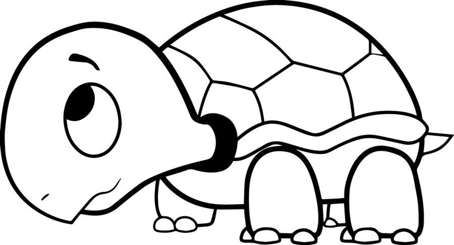 free printable sea turtle coloring pages at getdrawings