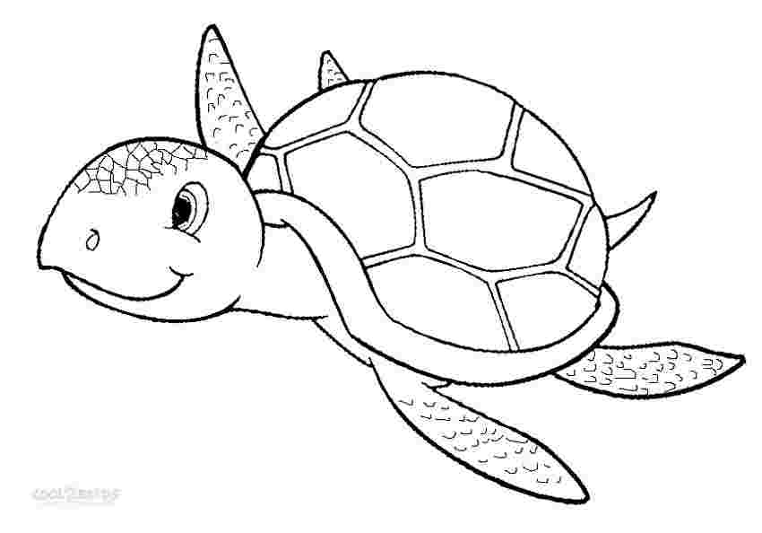 free printable sea turtle coloring pages huangfei