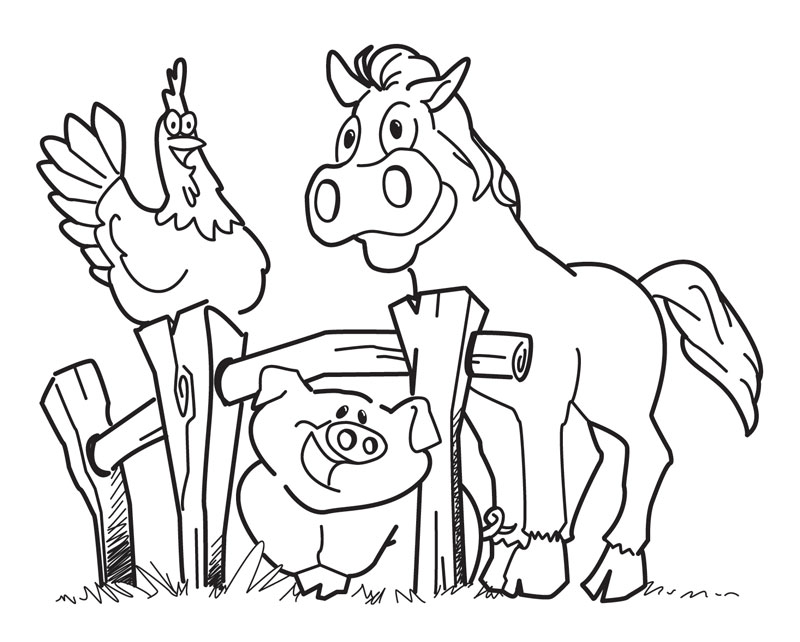 freeanimalcoloringpages animals coloring pages free