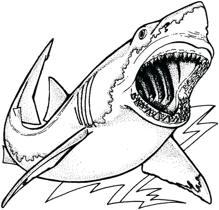 goblin shark coloring pages cantrallco